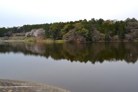 湯舟溜池ダム04