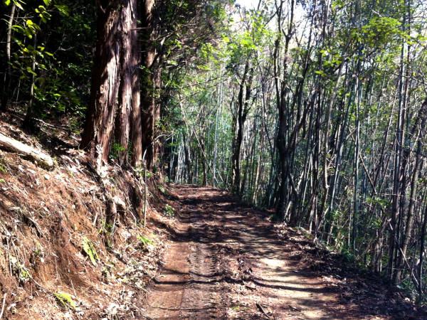2012-03-25-芋洗谷ダム01