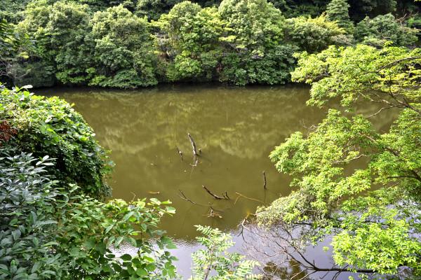 2013-06-22-西河内ダム18