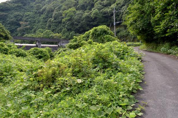2013-06-22-西河内ダム20